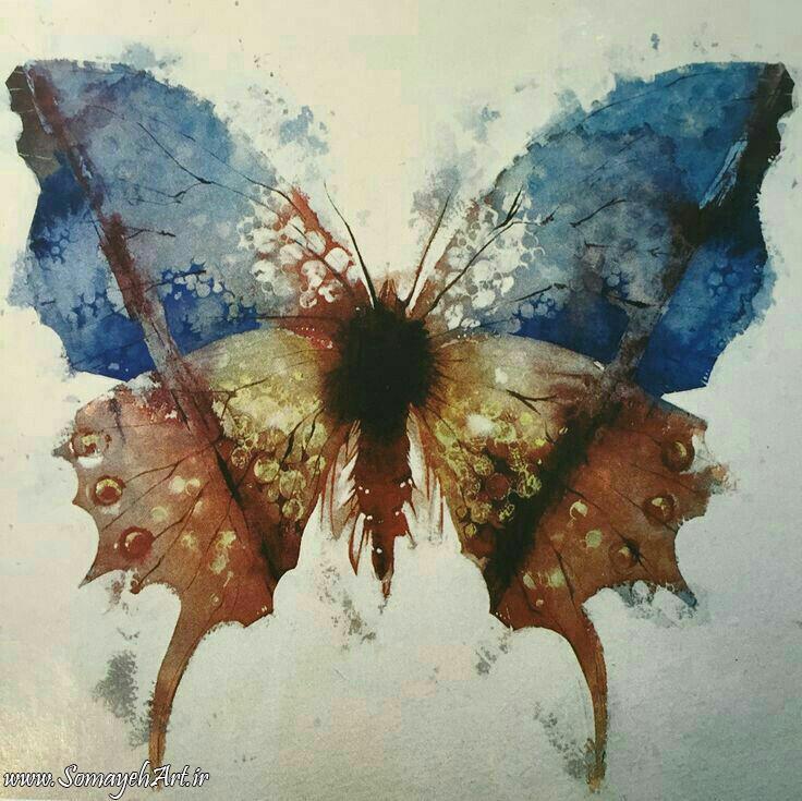 طرح پروانه برای نقاشی طرح پروانه برای نقاشی                                                  2