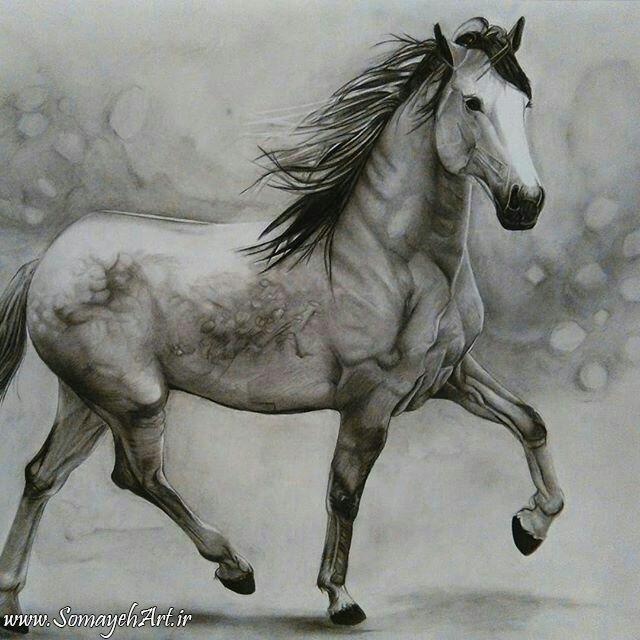 مدل نقاشی اسب