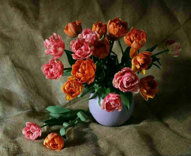 مدل نقاشی گل و گلدان گل مدل نقاشی گل و گلدان گل                                      768x626