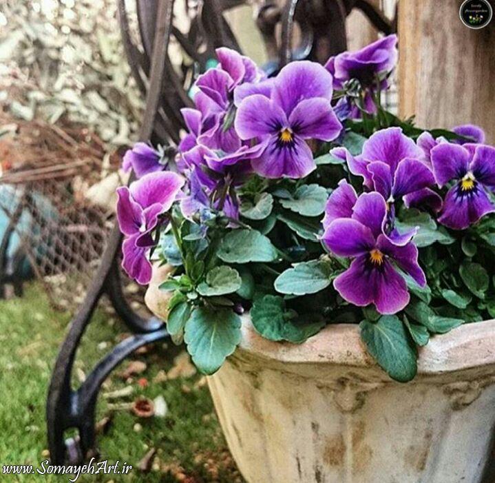 مدل نقاشی گل و گلدان گل مدل نقاشی گل و گلدان گل photo 2018 06 04 03 12 26