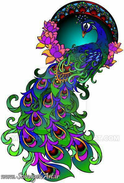 طرح های خام طاووس طرح های خام طاووس برای نقاشی photo 2018 06 07 04 25 29 2