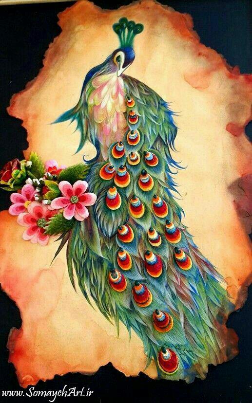 طرح های خام طاووس طرح های خام طاووس برای نقاشی photo 2018 06 07 04 25 41
