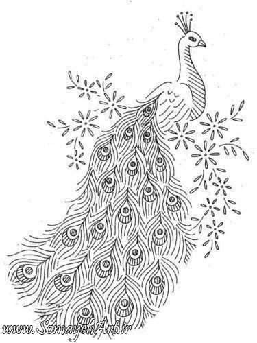 طرح های خام طاووس طرح های خام طاووس برای نقاشی photo 2018 06 07 04 25 43