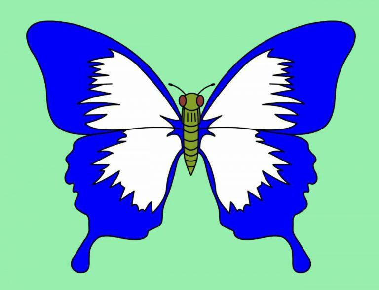 طرح پروانه برای نقاشی طرح پروانه برای نقاشی photo 2018 06 11 00 58 33 768x589
