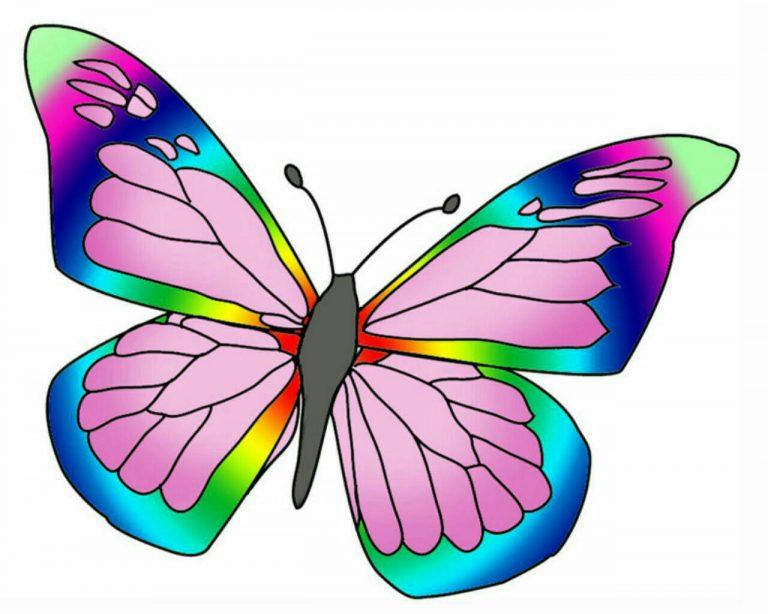 طرح پروانه برای نقاشی طرح پروانه برای نقاشی photo 2018 06 11 00 59 15 2 768x614