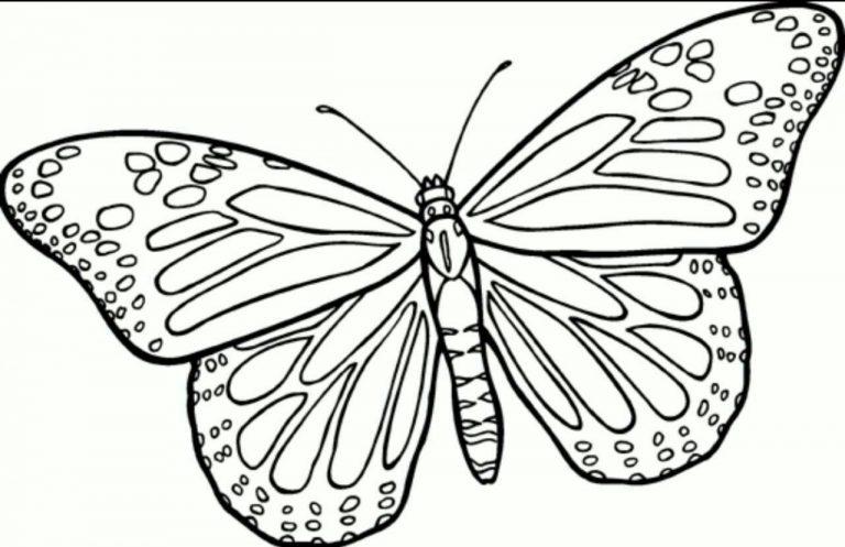 طرح پروانه برای نقاشی طرح پروانه برای نقاشی photo 2018 06 11 00 59 18 768x497
