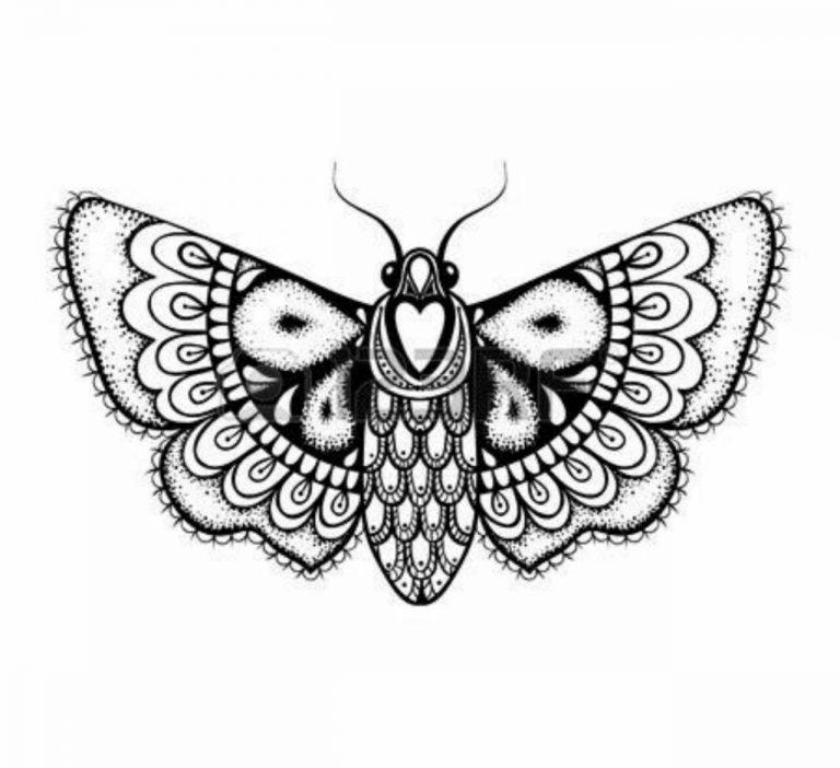 طرح پروانه برای نقاشی طرح پروانه برای نقاشی photo 2018 06 11 00 59 19 768x702