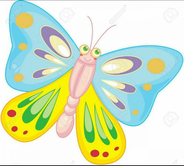طرح پروانه برای نقاشی طرح پروانه برای نقاشی photo 2018 06 11 00 59 20 768x693