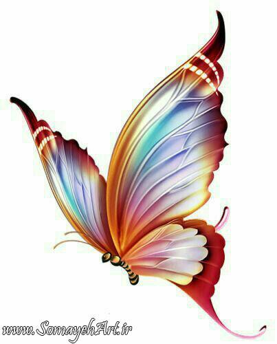 طرح پروانه برای نقاشی طرح پروانه برای نقاشی photo 2018 06 11 00 59 29 2