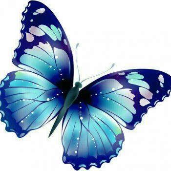طرح پروانه برای نقاشی طرح پروانه برای نقاشی photo 2018 06 11 00 59 39 2 350x350