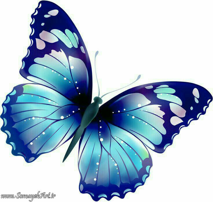 طرح پروانه برای نقاشی طرح پروانه برای نقاشی photo 2018 06 11 00 59 39 2
