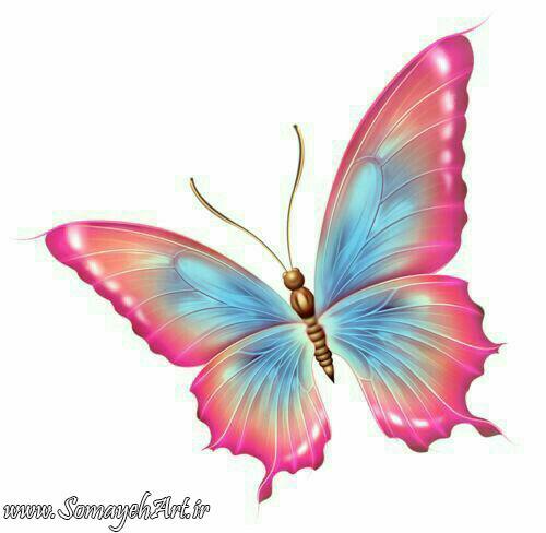 طرح پروانه برای نقاشی طرح پروانه برای نقاشی photo 2018 06 11 00 59 39