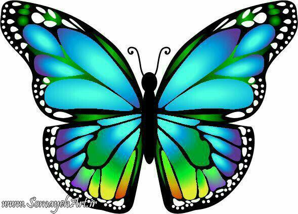 طرح پروانه برای نقاشی طرح پروانه برای نقاشی photo 2018 06 11 00 59 41